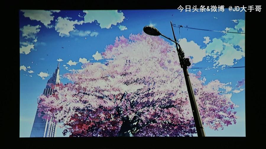 nEO_IMG_IMG_3310.jpg