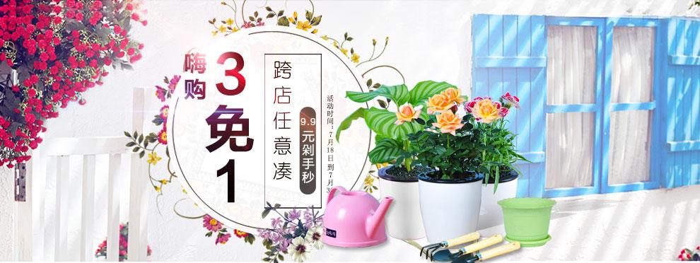 绿植花卉跨店3免1