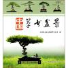 中国草书盆景 碧草风景