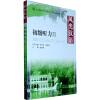 北大版对外汉语教材·基础教程系列:风光汉语(初级听力)(2)(全2册)(附MP3光盘1张) 新编实用英语听力教程1(第2版)(附mp3光盘1张)