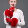 кожаныеперчаткишерстьдамысуперморосящийлиса подвеска shang yu 20140127 001