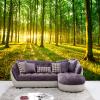 Фото обои Современный 3D Стерео лес Солнечный свет Природа Пейзаж Фото Стены Фрески Гостиная Телевизор Диван Фон Стена Главная Декор