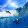 Пользовательские обои для фото 3D большая роспись гостиной диван дети мультфильм небо Дельфин море