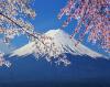 Пользовательская 3d-роспись Современная минималистская большая роспись обои спальня гостиная диван телевизор фон настенное крепление Fuji снег обои телевизор