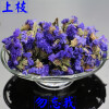 Chinese Flower Tea Do not forget me tea dry flowers decorative dried flowers F236 forget me not 7
