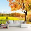 Пользовательские 3D-обои для фото Золотая осень Дерево Природа Пейзаж Фотография Фон Обои на рабочий стол Обои для гостиной Обои для рабочего стола