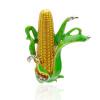 Симпатичные золотые кукурузные початки с капюшоном с капюшоном Женские праздники Эмаль Броши Ювелирные изделия Фермер Сельскохозяй
