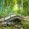 Маленькие мосты Пользовательские обои для фото 3D Bamboo Forest Пейзаж Картина Украшение стен Гостиная Спальня Обои Mural 3D