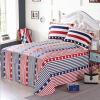 Shengwei постельные принадлежности домашний текстиль хлопковые листы хлопок саржа двуспальные кровати 230 * 250 см британский ветер