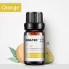 эфирные масла для увлажнителя масла для диффузора жасмин лаванда роза клубника аромамасла водорастворимые масла масла для аромате