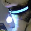 mymei очаровательно собаку под мигающий кпп щенка воротник безопасности ночной свет кулон лайки щенка белая церковъ
