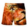 Ouma пляж брюки мужские творческие 3D печати штаны 2018 летом новый прилива бренда большой размер мужские плавки досуг