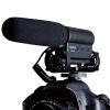 Победа (TAKSTAR) SGC-598 профессиональной камера новость интервью микрофона запись DV микрофон зеркальной камеры дробовика черных