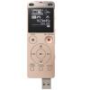 SONY Цифровой диктофон цифровой диктофон digital boy 4 wr06