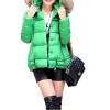 Женщины моды Зимний стеганый пуховик Короткая Тонкий меха с капюшоном куртки
