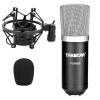 Победа (TAKSTAR) Teana PC-K500 микрофона в мягкой обложке издание конденсаторного компьютер K песня профессионального микрофон Записи конденсаторного черный костюм