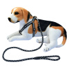 ЦЗЕШЭН натяжной канат, собачья круглая цепь, вережка для собак