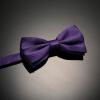 Полный Чи мужской формальной одежды бизнес галстук жениха корейский лук галстук женился британских мужчин банкетного женился сборочный украшен розовой точкой