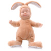 Бибер (Бибер) очаровательны плюшевый кролик спящая кукла умиротворить куклы куклы имитационные игрушки детские игрушки умиротворить оранжевый лед детские игрушки