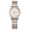 цена  FIYTA (FIYTA) Ши Ин часы серии Classic мужские часы черный листовой стали TG802005.WBW  онлайн в 2017 году