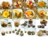 36 Типы Подарочные Цветущий чай * 36 бутонов * бесплатная доставка