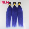 Ombre Human Hair 1B/Purple Brazilian Straight Hair Sew In Weft 8A Grade Virgin Brazilian Hair Extension 3 Bundles Weave Thick fhit a hit in human cancers