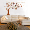 купить Removable Art Vinyl Quote DIY Memory Tree Wall Sticker Decal Mural Home Room Decor 350052 недорого
