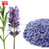 50g Lavender dried flower tea yangxinanshen sleeping the health care Chinese herbal gift flower tea herb bag good to sleep футболка классическая printio зойдберг футурама