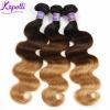 Ombre бразильские волосы бразильские волосы волос волос волос волос 3 комплекты Ombre выдвижения волос 3 тон 1b / 4/27 Ombre человеческие волосы Weave barbie hair products 3 3