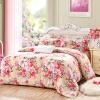 Айви (AVIVI) четыре комплекта постельных принадлежностей 40 моделей с двойной двуспальной кроватью 1,5 / 1,8 кровати