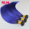 Ombre Human Hair 1B/Purple Brazilian Straight Hair Sew In Weft 8A Grade Virgin Brazilian Hair Extension 5 Bundles Weave Thick fhit a hit in human cancers