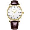 цена  FIYTA (FIYTA) механические часы классической серия мужского признания пластина ремень DGA0062.GWR  онлайн в 2017 году