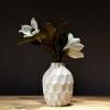 Лин И вазы просты модные ваза украшения вазы pavone ваза гибискус