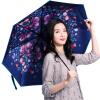 [Супермаркет] Jingdong Lan поэзия дождь Z0371 черный зонтик складной зонтик зонтик дождь или светить синий бабочка черный дождь