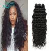 Grace Hair Products Burmese Natural Wave Human Virgin Hair 7a Необработанные бирманские волосы Virgin Water Water Wave 4 Bundles Natural Black queen hair products 7a 3 100%