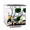 Одд квадрат Переполнение ведро естественно небольшой аквариум аквариум аквариум аквариум мини ведерко цилиндр акрилового аквариума аквариум аквариум экология квадратный черный цилиндр с подсветкой солоноватоводный аквариум
