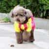 Teddy Bear домашнее животное домашнее животное собака плащ собака одежда Тедди Бишон одежды собаки любимчика одежды пурпурного No. 5