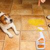 Китайский юань домашнее животное с (HOOPET) Тедди Голден кота собакой дезодорант спрей дезодорант духи окружающей среды пописать дезодоранты organiczone дезодорант