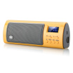 Long Qin ROYQUEEN X6III full-featured card speaker radio music player music player portable mini audio recording breakpoint memory TF card  U disk vit