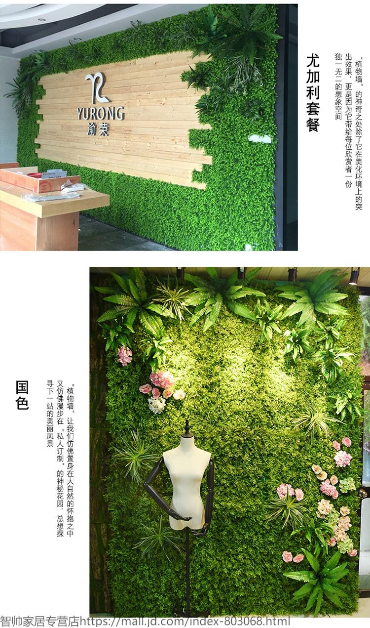 植物墙 室内空气净化神器_室内植物墙价格_植物墙价格