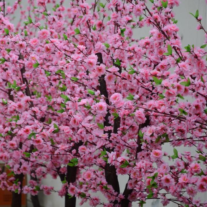 桃花岛的桃花什么时候开_桃花树下桃花庵,桃花庵里桃花仙,桃花仙子种桃树_仿真桃花
