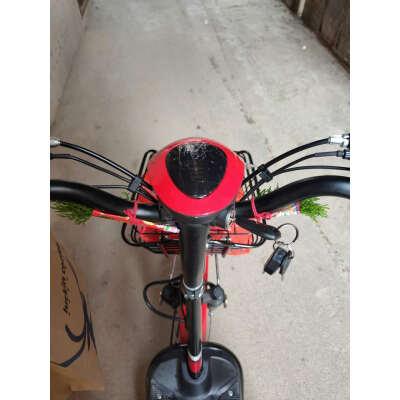 大神如何看待雅迪锐致电动自行车怎么样,内幕反馈!