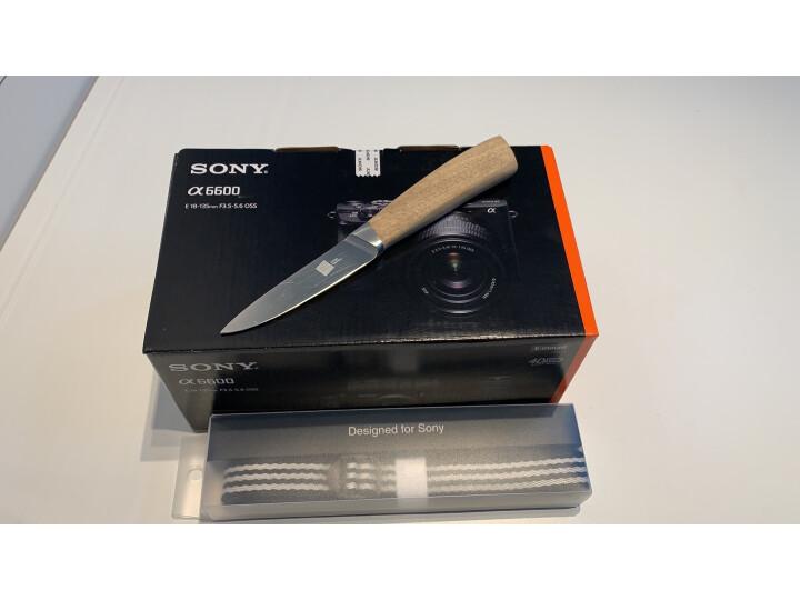 索尼 Alpha 6600M 18-135mm镜头 APS-C画幅微单数码相机优缺点评测?是大品牌吗排名如何呢? 艾德评测 第1张