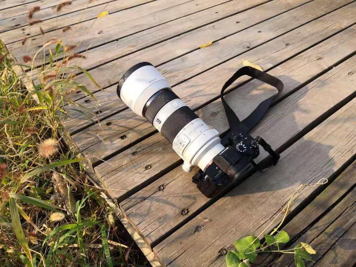 索尼(SONY)FE 70-200mm F4 G OSS 全画幅远摄变焦微单相机优缺点如何,真想媒体曝光 选购攻略 第11张