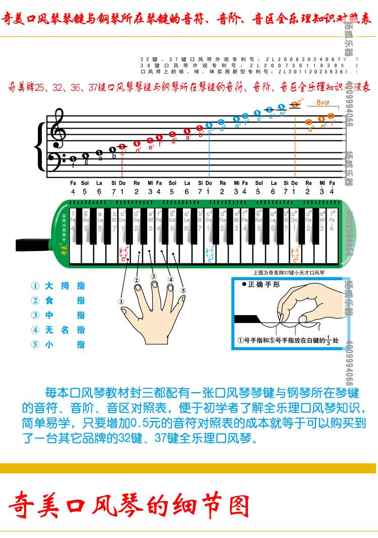37键口风琴音符 奇美口风琴37键 口风琴37键