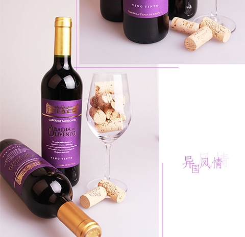 西班牙原瓶进口红酒 迪奥蒙特赤霞珠干红葡萄