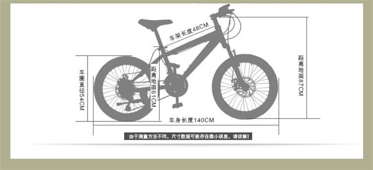 上海凤凰20寸21速男女儿童山地车学生自行车山地自行车双碟刹赛车