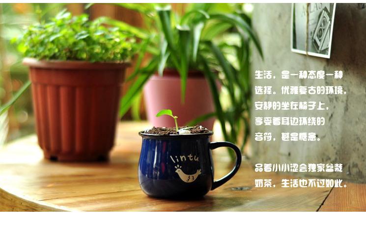 2014最新经典流行低帮透气帆布鞋男士韩版潮流休闲鞋