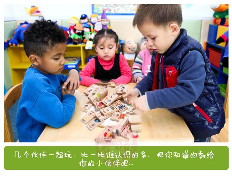 【洛宝贝儿童早教 多米诺识字认物 100块 学习