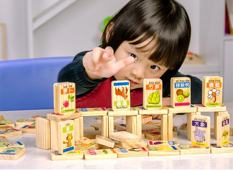 木貴嬰 - 水果動物多米諾,水果積木,動物積木,兒童智力積木拼圖